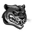 Panther mascot team label design vector image vector image