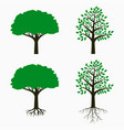tree with root and leaf vector image