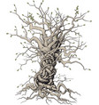 interlaced tree vector image