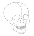 a human skull on white background with single vector image vector image