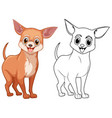 animal outline for chiwawa dog vector image vector image