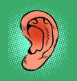 ear part body hearing sounds vector image