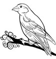 hand drawn sparrow bird animal sketch vector image vector image