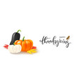 hello thanksgiving banner template with pumpkin vector image