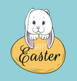 lovely easter bunny with egg vector image vector image