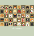 smile dog background set vector image