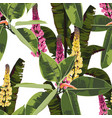 tropical bright ficus elastic and lupines flowers vector image vector image