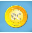 Bit coin icon vector image