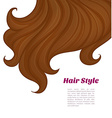 Beautiful brunette hair vector image vector image