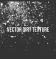 dirt or grain texture vector image vector image