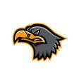 eurasian sea eagle head mascot vector image vector image