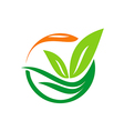leaf abstract bio floral logo vector image vector image