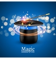 Magic Hat with Magic wand Magician vector image vector image