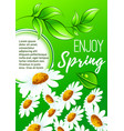 spring flower poster for springtime holiday design vector image vector image