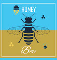 top view silhouette flying honey bee icons poster vector image