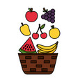 wicker basket with fruits apple grapes banana and vector image vector image