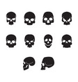 flat black home skull icon set vector image vector image