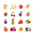 natural food - modern line icons set vector image vector image