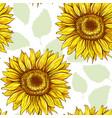 Sunflowers field seamless pattern