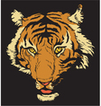 T-shirt design with raging tiger