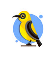 bird oriole on the branch flat style logo for vector image vector image