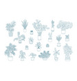 different monochrome houseplants icons in line art vector image vector image