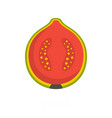 guava icon flat style vector image vector image