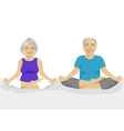 Senior couple doing yoga vector image vector image