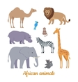 set african animals flat design vector image