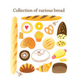 set different bread vector image vector image