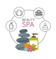 beauty spa set flat icons vector image