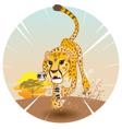 cheetah king speed vector image vector image