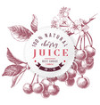 cherry juice paper emblem over hand drawn cherry vector image vector image