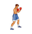 flat muscular handsome boxer man vector image