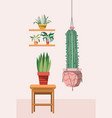 houseplants in macrame hangers and wooden chair vector image vector image