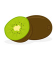 kiwi fruit icon isolated fruits and vegetables vector image