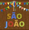 sao joao vector image vector image