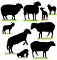 sheep and lamb silhouettes set vector image vector image