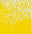 white sakura blossom on sunny yellow background vector image vector image