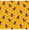 bee honeycomb pattern vector image vector image