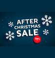 christmas banner xmas snowflakes vector image vector image