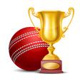 Cricket vector image vector image