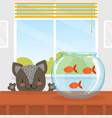 cute funny cat looking at fishes in aquarium vector image