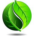 Green Logo - Yin Yang LEAF Symbol vector image