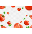 realistic fresh red ripe tomato pattern vector image