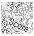A Good Credit Score Word Cloud Concept vector image vector image