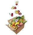 fresh exotic fruits in cardboard box vector image