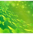 green butterflies vector image