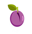 plum icon flat style vector image vector image