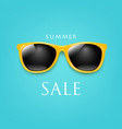 sale poster sunglasses and mint background vector image